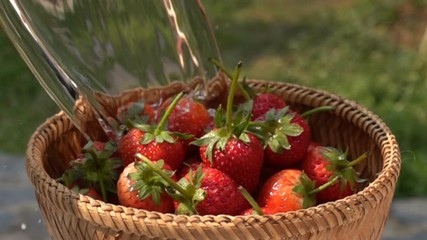 Fototapete - Pour water to the bamboo basket full of strawberries in Slow Motion
