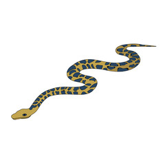 isolated, snake, on a white background, flat style snakes