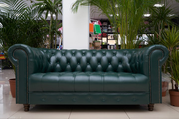 A place to relax or waiting area, the Chester leather brown sofa and large indoor plants are on the floor. Leather sofa and large home plants, palm trees chamaedorea and dracaena Fotomurales