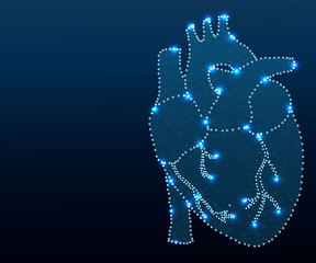 human heart polygon blue-new 1-3