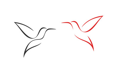 Hummingbird logo. Isolated hummingbird on white background. Outline