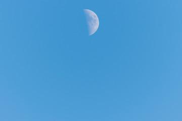 Half moon on a clear blue sky
