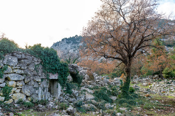 Antalya - Turkey. December 21, 2017. Termessos Ancient City wintertime in Antalya, Turkey.Termessos one of Turkey's major attractions, 30km northwest of Antalya