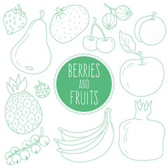 Set of fruit and berries in the style of Doodle: Apple, pear, tangerine, strawberry, cherry, gooseberry, apricot, pineapple, raspberry, pomegranate, banana, currant. Vector