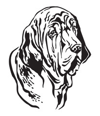 Decorative portrait of Fila Brasileiro Dog vector illustration
