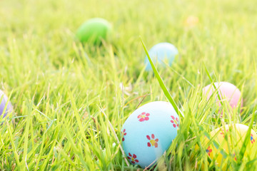 Happy Easter. Easter eggs concept. The colorful of Easter eggs in nest on grass green background.