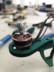 Electric brushless motor