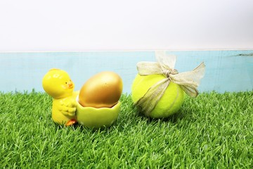 Chicken and eggs with Tennis ball on green grass