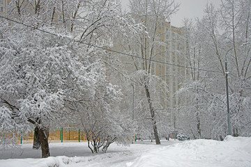 WINTER LANDSCAPE of Moscow - snow snow snow