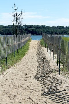 usa, long island, fence, river, landscape, nature, summer, green, tree, rural, trees, forest, countryside,