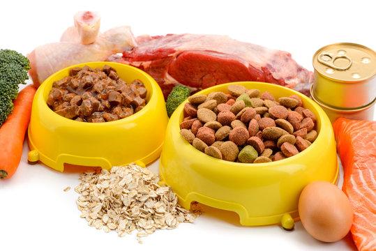 Bowls of pet food