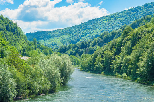 forest river in mountains. forested hill and shores. beautiful summer scenery at sunny high noon. fluffy cloud on the blue sky