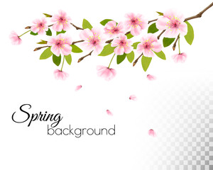 Fototapete - Sakura japan cherry branch with a pink flowers on wooden background. Vector