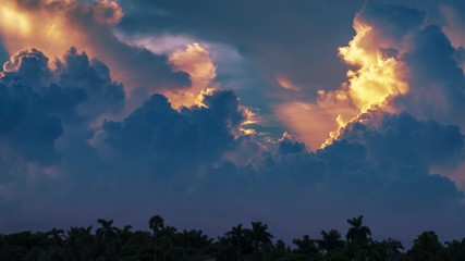 Fotobehang - Epic storm tropical clouds over palm trees silhouettes landscape at sunset. 4K UHD Timelapse.