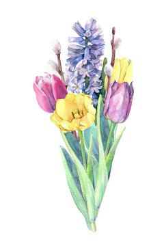 Beautiful bouquet of spring flowers - tulips, hyacinth and willow branches. Watercolor hand drawn illustration.