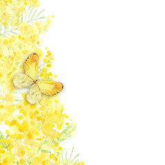 Festive spring background with mimosa and butterfly. Watercolor illustration on white background with place for text. Greeting card or invitation. Vertical composition.
