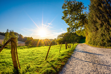 Fototapete - Autumn landscape at sunset with a path beside a meadow
