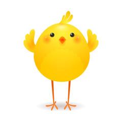 Happy little chicken