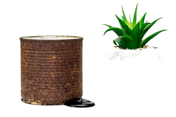 A rusty brown barrel with toxic waste leakage is isolated on a white background along with a green Bush.