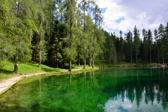 A lake in the forest at springtime