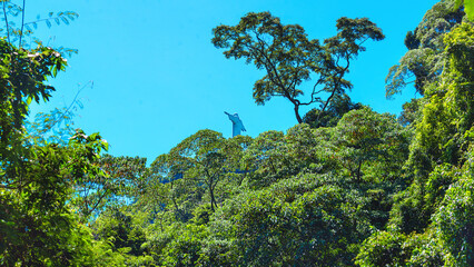 Wall Mural - View of Rio de Janeiro with Christ Redeemer through the park trees. Brazil. Latin America