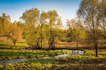 Beautiful russian landscape. The picture was taken in the spring, in the evening light, near the large suburb of Moscow - Mytischi.