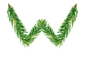Letter W, English alphabet, collected from Christmas tree branches, green fir. Isolated on white background. Concept: ABC, design, logo, title, text, word