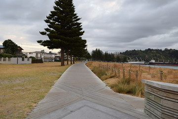 The timber path cuts through the grass and tussock following the beach in Gisborne, New Zealand.