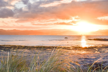A soft sunset falls behind a natural beach landscape in Gisborne, New Zealand.