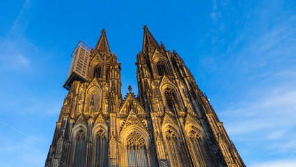 Fotomurales - Front of Cologne Cathedral with scaffold against blue sky