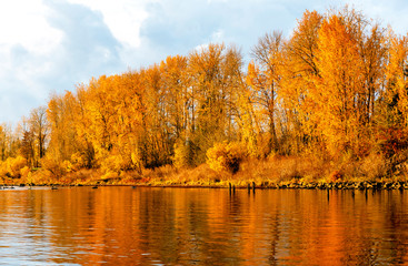 Landscape with yellow autumn trees and reflection in the river