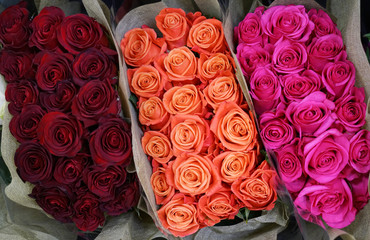 Fototapete - bunches of colorful roses