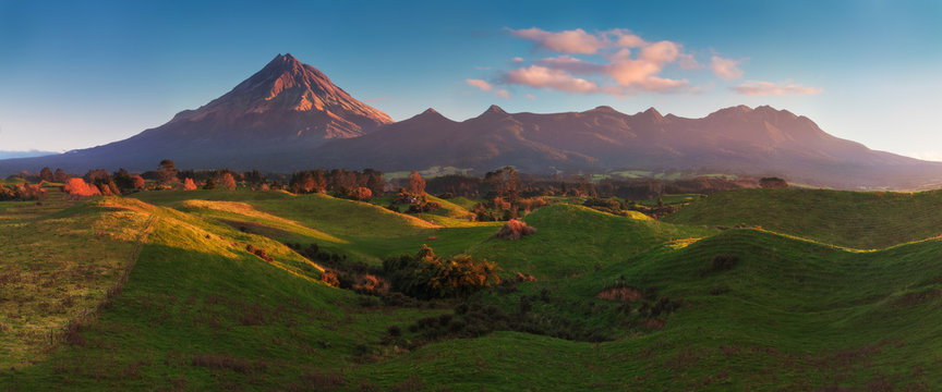 Mount Taranaki under the blue sky with grass field and cows as a foreground in the Egmont National Park, the most symmetrical volcanic cones, Taranaki, New Zealand Green farmland in the foreground