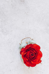 Alarm clock and red ranunculus with copy space. Springtime. Top view.