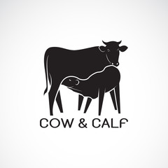 Vector of cow and calf on white background.  Farm Animal. cow Icon or logo. Calf is sucking the cow's milk. Easy editable layered vector illustration.