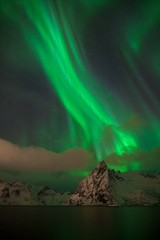 Aurora borealis dancing on mountain in fishing village at Reine and Sakrisoy, Lofoten, Norway Visiting the Lofoten Islands during winter time is a dream for all landscape photographers Christmas time