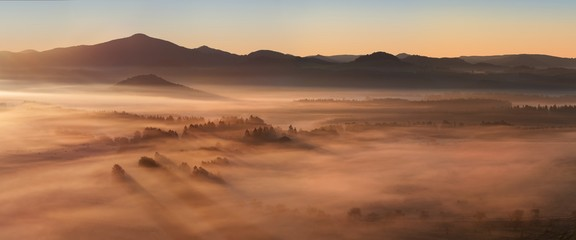 Beautiful summer or autumn sunrise above the forest valley of National park Bohemian Switzerland. Warm sunrise above the deep misty valley. Wonderful landscape background concept. Rays of lights