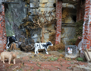Fotobehang Marokko rural scene with the stable and the calf and the plastic pig