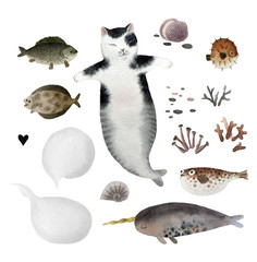 Set of watercolor cat and fishes