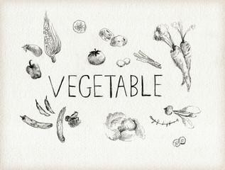 鉛筆で描いた野菜のラフスケッチ