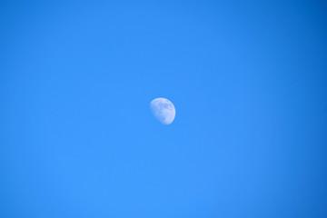 Mond am Tag, Halbmond, Blauer Himmel, Frühling