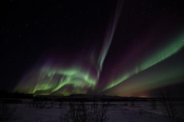 aurora borealis at thingvellir national park Iceland