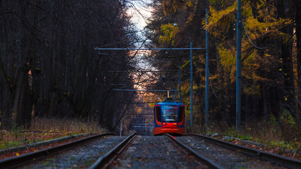 Tram in the park in late autumn