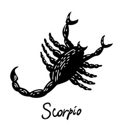 Scorpio zodiac hand drawing sign for horoscope. Usable for mystic  occult  palmistry and witchcraft alchemy. Vector.