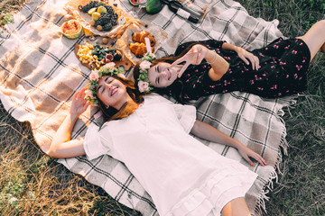 Two best friends on picnic in the field laying on the laid smiling top view friendship concept