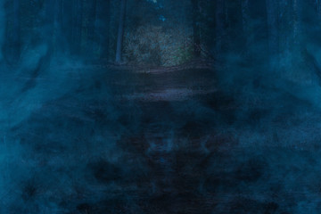 Mysterious blue mist in the night fores. Concept of wildlife and wilderness