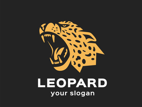 Leopard logo. Vector format, available for editing. Gold version. Dark background.