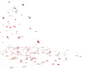 Small rose petals fly and fall to the floor