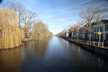 Fluwelensingel with the canal and a weeping willow without leaves in the winter in Gouda, the Netherlands