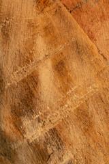 Distressed Wood 4